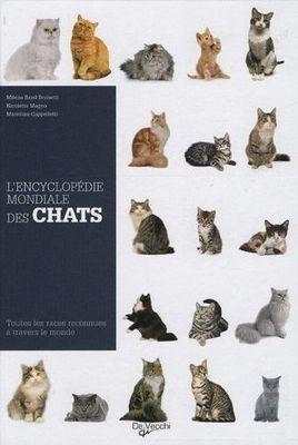 Toutes les races de chats du monde